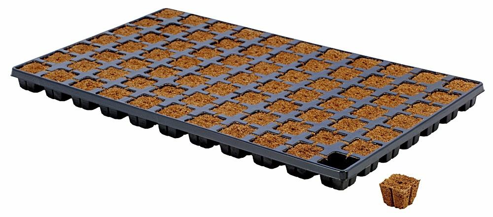 Eazy Plug Ültetőkocka 77 db tálcás kiszerelés
